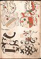 Wernigeroder Wappenbuch 491.jpg