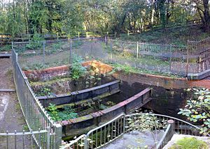 Wet Earth Colliery - The excavated wheelpit for Brindley's pumping system at Wet Earth Colliery (seen in 2007). It now houses the remains of a turbine.