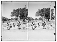 Where Elijah rested, Valley of Jehosaphat? LOC matpc.08779.jpg