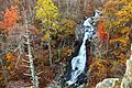 White-oak-canyon-waterfalls - Virginia - ForestWander.jpg