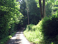 Whitegates Lane - geograph.org.uk - 1357635.jpg