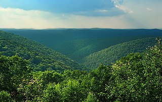 Lumber Township, Cameron County, Pennsylvania Township in Pennsylvania, United States