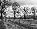 Wijnjeterper Schar, Natura 2000-gebied provincie Friesland 019.jpg
