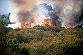 Wildfire burns on Wilcox Range in Camp Pendleton.jpg