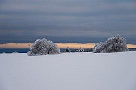 Winter in der Rhön 2021.jpg
