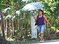 Woman with Parasol - Balgue - Ometepe Island - Nicaragua (31668997252).jpg
