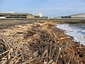 Wood spill at Brighton Marina - geograph.org.uk - 1570044.jpg