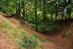 Woodbury Castle - Part of the hillfort's earthworks