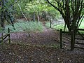 Woodland Crossroads - geograph.org.uk - 1546630.jpg