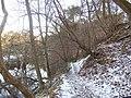 Woods beside River Derwent, nr Hathersage - geograph.org.uk - 133475.jpg