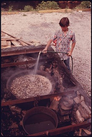 Boiled peanuts - A boy preparing boiled peanuts in Helen, Georgia, c. 1974.