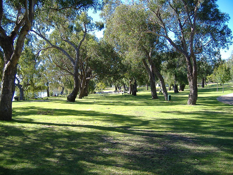 File:Yanchep National Park 4.jpg