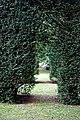 Yew hedge arch Easton Lodge Gardens, Little Easton, Essex, England 04.jpg