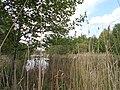 Zolotonis'kyi district, Cherkas'ka oblast, Ukraine - panoramio (424).jpg