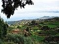 Zona de cultivo - panoramio.jpg