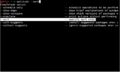 Zsh screenshot.png
