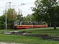 Łódź tram 2019 20.jpg