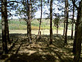 Балка Північна Червона 01.jpg