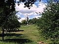 Вышгород. Фото Виктора Белоусова. - panoramio (7).jpg