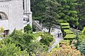 Группа растений у западного торца дворца.jpg
