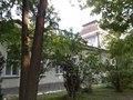 Гімназія в Дрогобичі, вул. П. Орлика, 8 DSCN1446.JPG