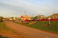 Жнибороди - В'їзд у село з боку Берем'ян у вранішній час - 10055100.jpg