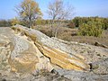Каменная могила пейзаж тысячилетий.JPG