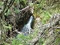 Каньонът на река Бъндерица,гледан от пътеката за х.Бъндерица - panoramio - Красимир Косев.jpg