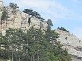 К вершине Ай-Петри. Крым. Сентябрь 2012 - panoramio.jpg