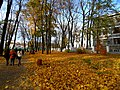 Маріїнський парк 04.jpg