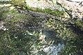Напор нереальный. Святой ключ. Ямаш. Альметьевский р-н. РТ. Июль 2014 - panoramio.jpg