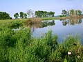 Озеро - panoramio - Matveev Michail.jpg