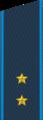 Погон прапорщика ВВС с 2010 года.png