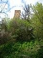 Руїни замку в с. Тайкури (ракурс 4).JPG