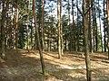 Шелаево, Валуйский район 11.jpg