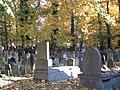 בית הקברות היהודי בקרקוב - קברים (2).jpg