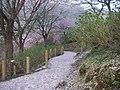 うつぶな公園 - panoramio (18).jpg