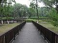 七桥瓮湿地公园 - panoramio (4).jpg