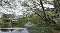 井の頭公園 - panoramio (80).jpg