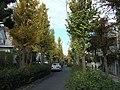 古市場コミュニティ道路 - panoramio.jpg