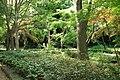 東高根森林公園 - panoramio (32).jpg