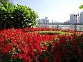 松花江景区DSCF0153 - panoramio.jpg