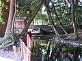 水神社の水神の池 - panoramio.jpg
