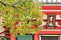 知恩院 Chion-in (11152896664).jpg
