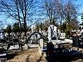- Cmentarz Nowofarny - panoramio (9).jpg