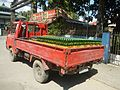 0017jfAlejo Santos Highway Bustos Tanauan Bulacanfvf 04.jpg