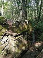 0045 Reserva de la Biosfera Terras do Miño. Capela de Santo Alberte. Fuente.jpg