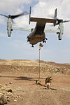 "11th MEU Djibouti Sustainment Training, ""We Jump from Perfectly Good Helicopters"" 141111-M-QH793-052.jpg"