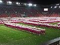 15. sokolský slet na stadionu Eden v roce 2012 (51).JPG