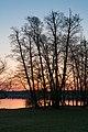 18-04-08-Werbellinsee-Südufer RRK1692.jpg